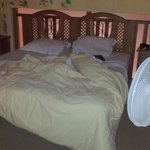 Comfy Beds... with our fan from home.. much needed in the heat