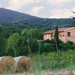 Foto de Agriturismo San Mauro