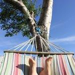 Sous le soleil en été, le pied