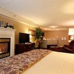 Photo of Fireside Inn & Suites