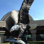 Seven Feathers eagle