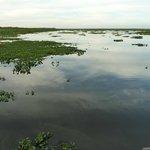 pantanal na pousada