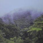 Hiking trail close to Ceiba Country Inn