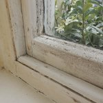 Bathroom window, same condition as bedroom window