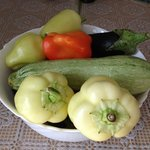 Fresh vegetables from the garden