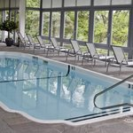 A swim anyone? Pool at our Spa.