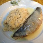 Fish with risotto