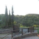 Maremma view from room window