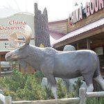 Moose in front of Chinese Restaurant