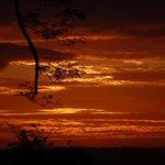 Treehouse Sunset