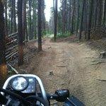4 wheeler trail