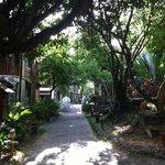le camere inserite nel lussureggiante giardino