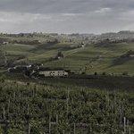 Bilde fra Agriturismo La bella estate