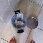 poubelle cassée