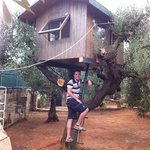 casina sull'albero