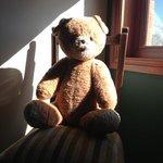 Well loved teddy bear friend!