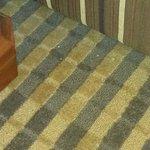 Debris, food on carpet.