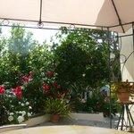 the garden of hariklia