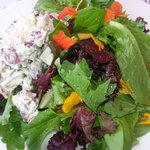 Chicken salad with fresh mixed greens