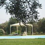 Zona piscine