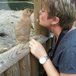 Admiring a Prairie Dog......