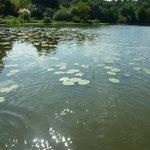 Lac du Turc