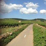 Beaune bike route