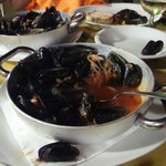 Mussels in a red sauce: a great appetizer