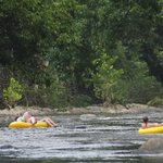 Tubing down the Little Pigeon River