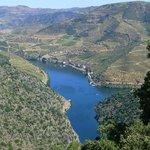 Vigneti sul fiume Douro