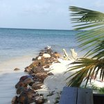 Hatchet Caye dining room view