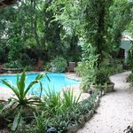 le must de l'hotel: la piscine