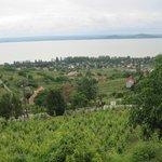 Вид с гор в районе города Бадаскони на озеро Балатон