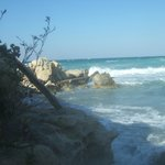 il mare fra l'albergo e la spiagga dell'albergo