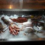 fresh daily fish