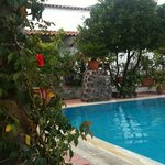 rose e piscina