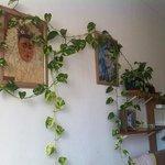 frieda kahla room