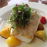 Fresh Grilled Halibut