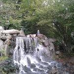 waterval in Park Sonsbeek