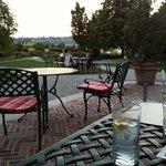 uitzicht op tuin vanop terras