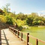 Dalian Botanical Garden 大连植物园 大連植物園
