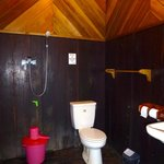 The shower/toilet room at the back of a Sapphire room