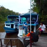Arrival by Klotok river boat at Rimba Lodge