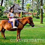 Weekend Family Activity on Ground Level includes Pony Rides! Free for hotel guests