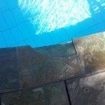 piscine dangereuse