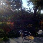Morning tea of the balcony