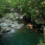 Todoroki Mountain Stream