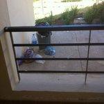 Les poubelles, vues du balcon de ma chambre