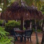 Cozy garden area