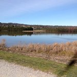 Lilydale lake July